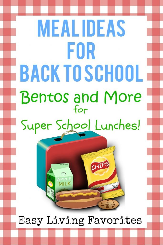 8 Best Kids Lunch Boxes with Compartments Bentos and More for Back to School